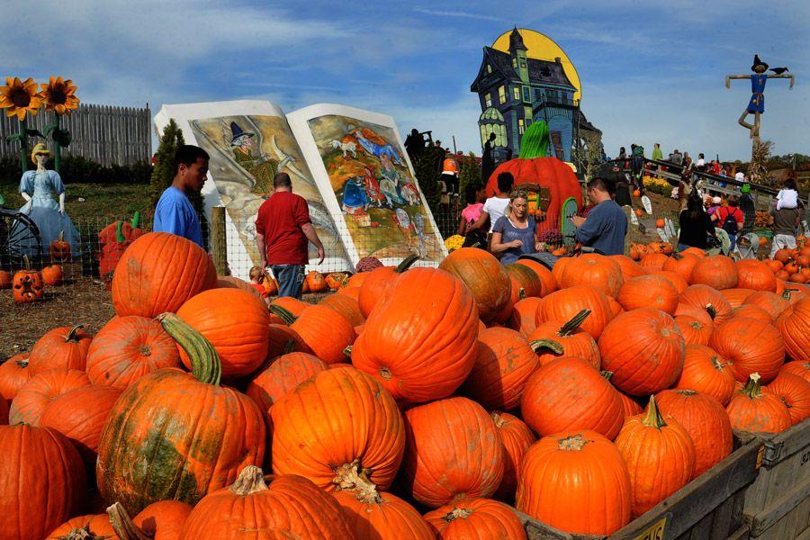 Fall Festivals in Philadelphia Halloween event, Best