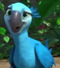 Rio And Jewel Google Search Movie Art Cute Drawings Rio Movie