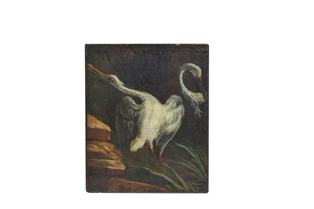 Court painter Jean-Baptiste Oudry, Birds in between reeds, France, 1730 available on CLASSIQS – www.classiqs.com
