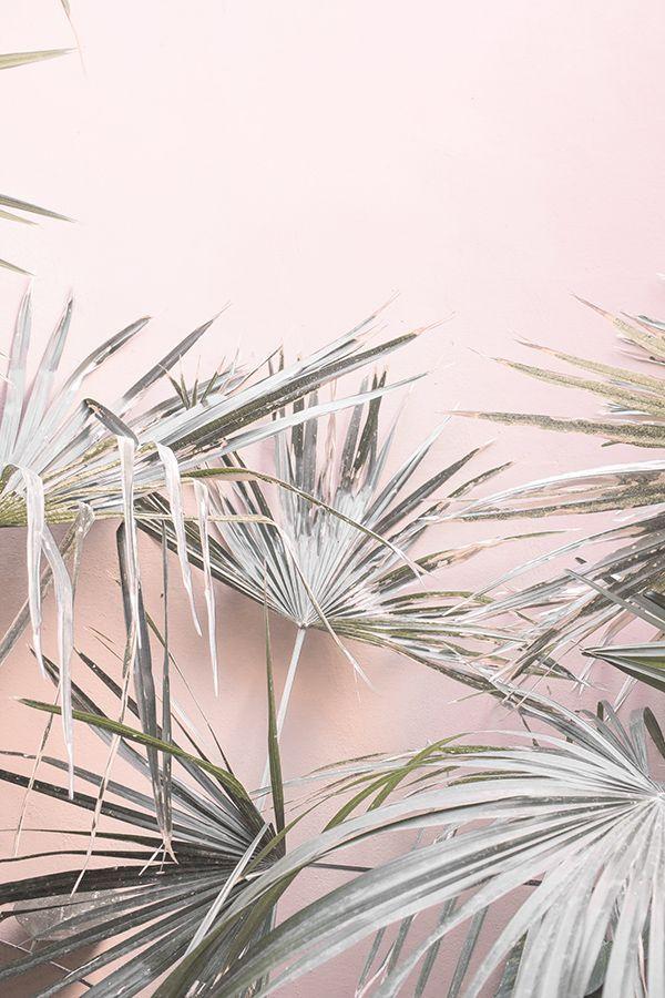 Pink Wall Art, Pastel, Pink Prints, Large Wall Art