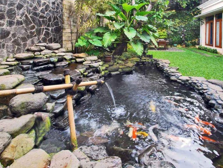 Inilah 7 Ide Desain Kolam Ikan Minimalis Batu Alam Minimalis Modern