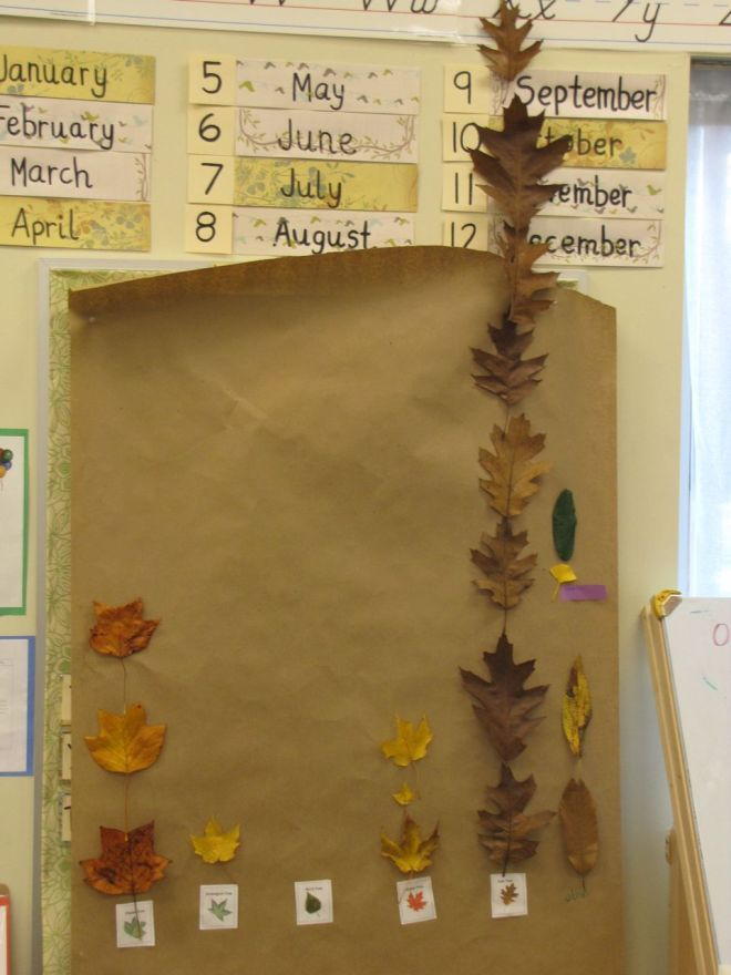 Kindergarten Classroom at the Early Learning Community - Blog - Leaf Graph