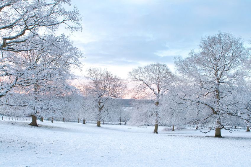 Don't Be Frigid: Be Safe in <b>Extreme</b> <b>Winter</b> <b
