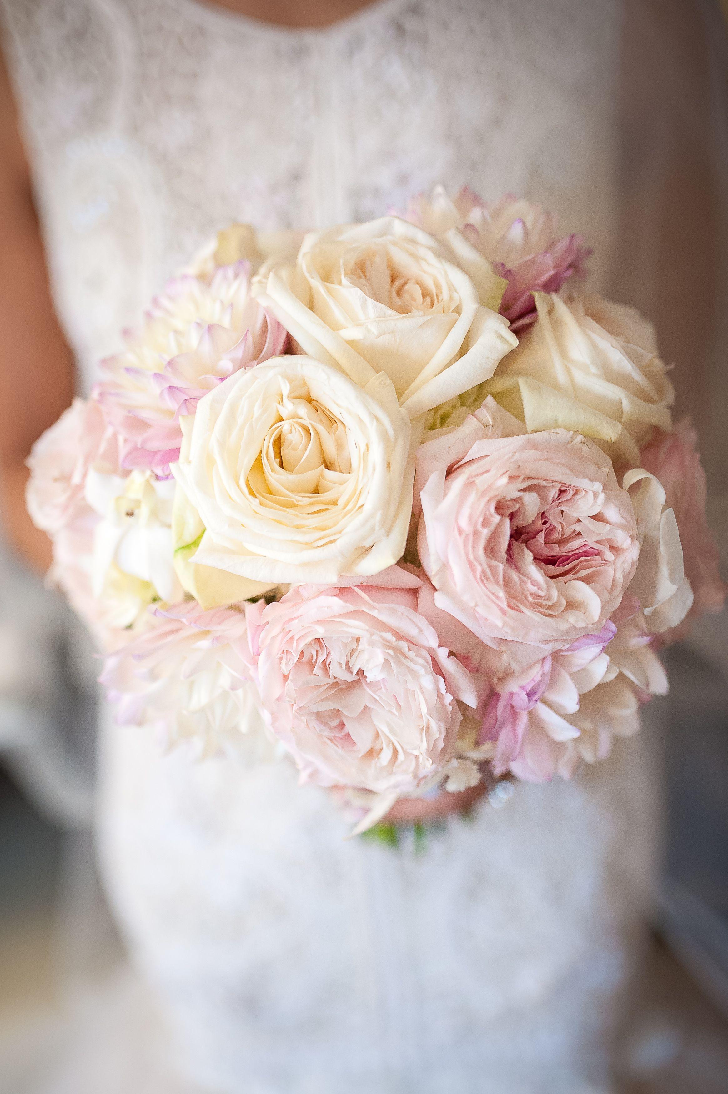 Cream Garden Rose fluffy blush and cream garden roses for a romantic brides bouquet