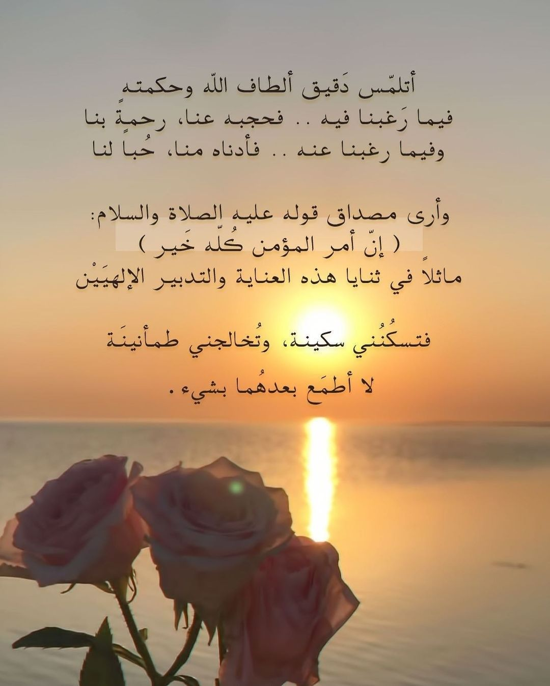 Pin By عبق الورد On أقول حكم ونصائح In 2021 Life Quotes Arabic Quotes Quotes