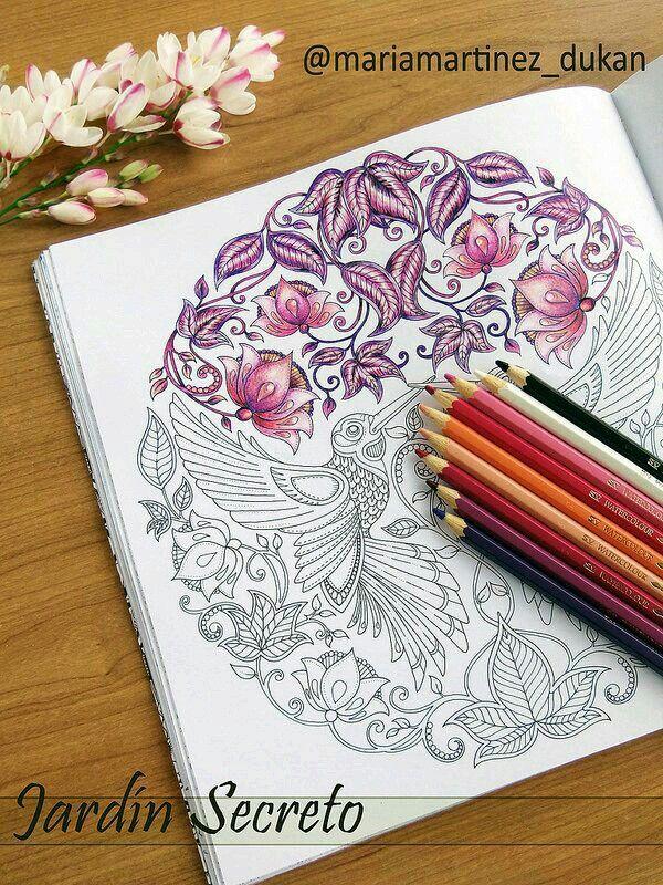 Colorir color secret garden jardim secreto | Coloring with Pencils ...