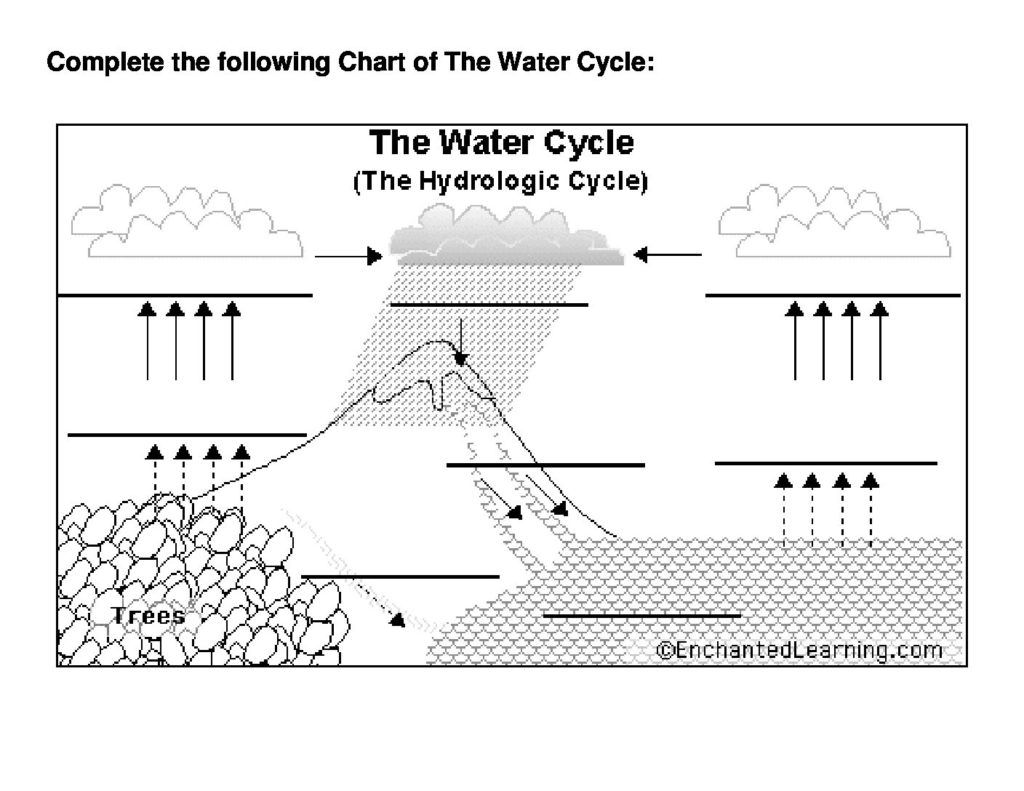 34 Water Cycle Worksheet Fill In The Blank