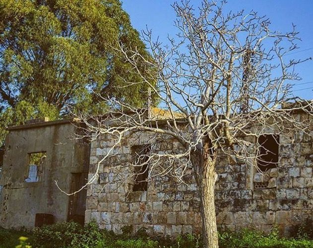 من البيوت القديمة في النبطية جنوب لبنان Old House In Nabatieh South Lebanon Photo From Livelovenabatyieh On Insta Garden Arch Outdoor Structures Outdoor