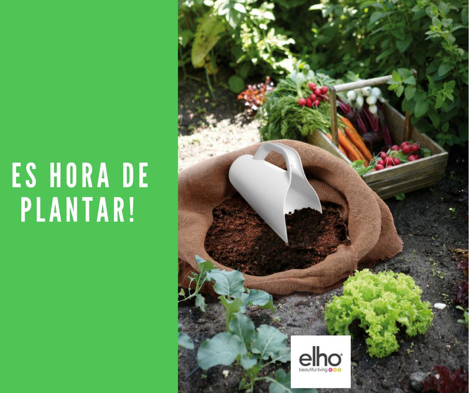 es hora de #plantar #flores #plantas #elho #elhomexico #macetas ...