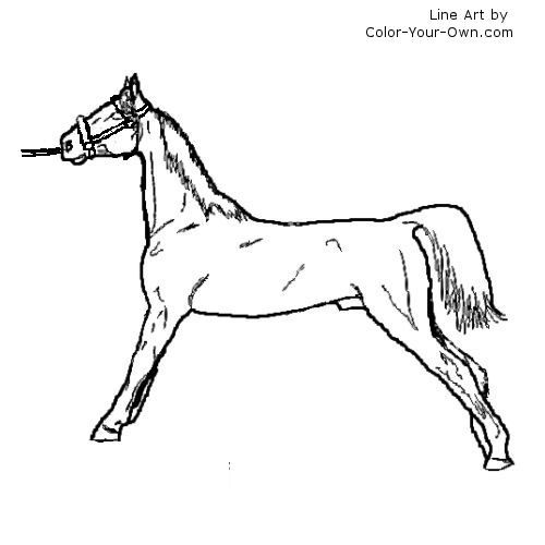 the saddle club coloring pages | nice saddle club Colouring Pagesing pages | Colouring ...