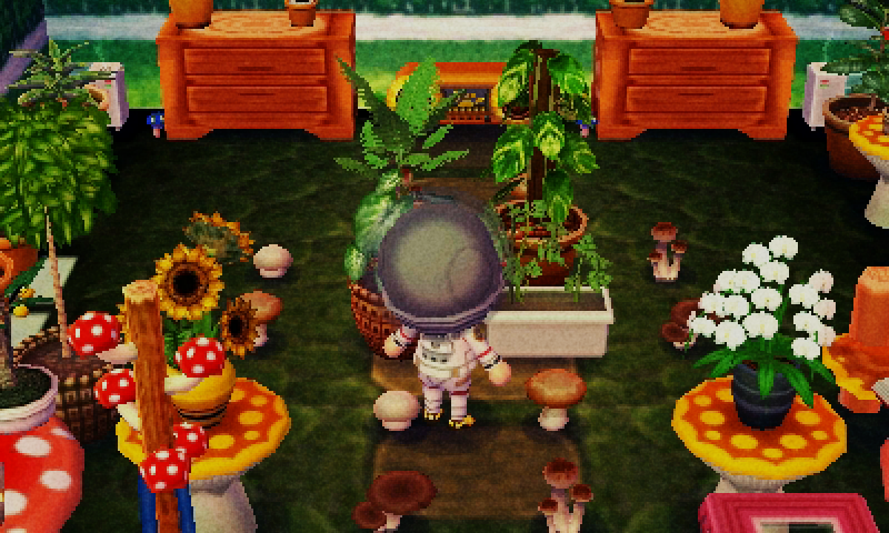 I have animal crossing new leaf to   Animal Crossing homes ...