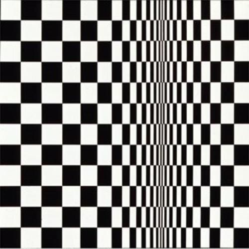 Movement in squares - Bridget Riley.
