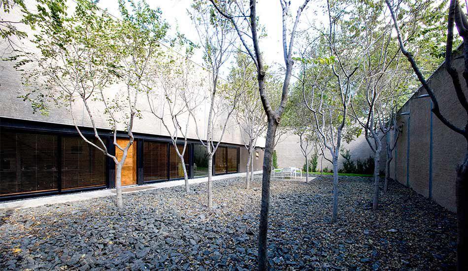 Studio MAS courtyards on oxford Garden landscaping