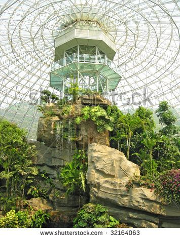 Indoor Of Botanical Garden In Dalian China
