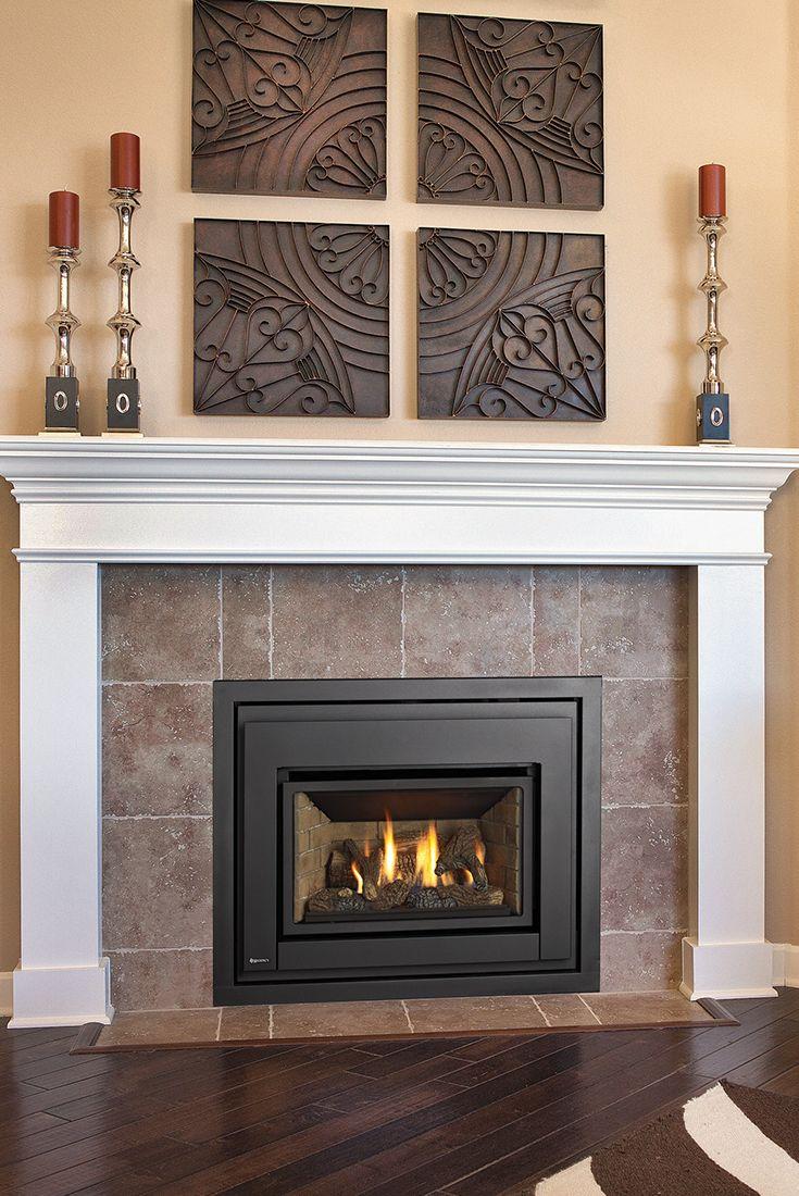 Regency E18 Gas Fireplace Insert Gas Fireplace Insert Fireplace