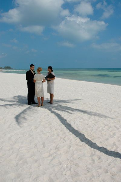 A Key West Beach Wedding Under The Shade Of Lone Palm Second Weddings