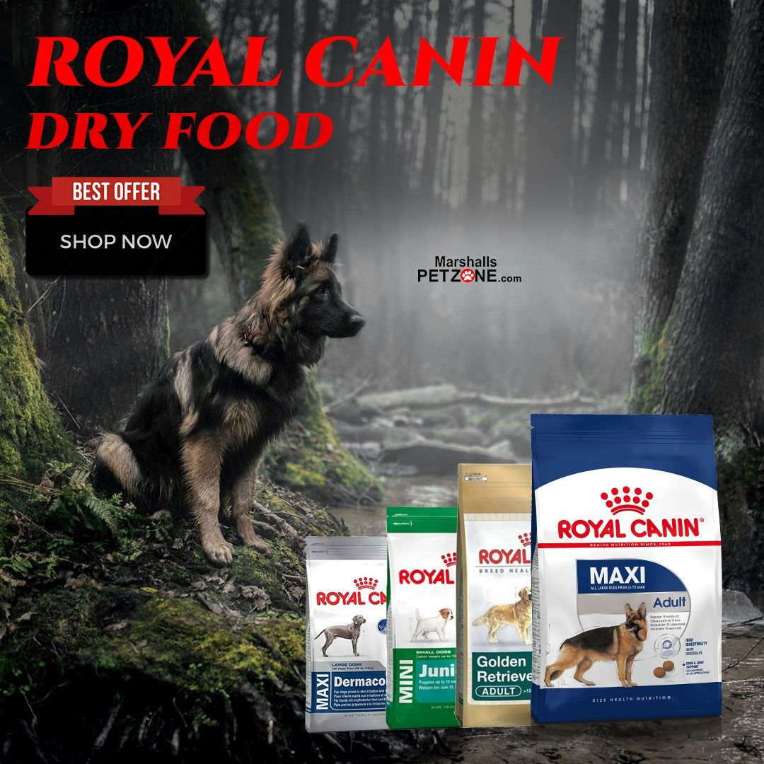 Royal Canin Dry Food With Special Varieties For Different Breeds