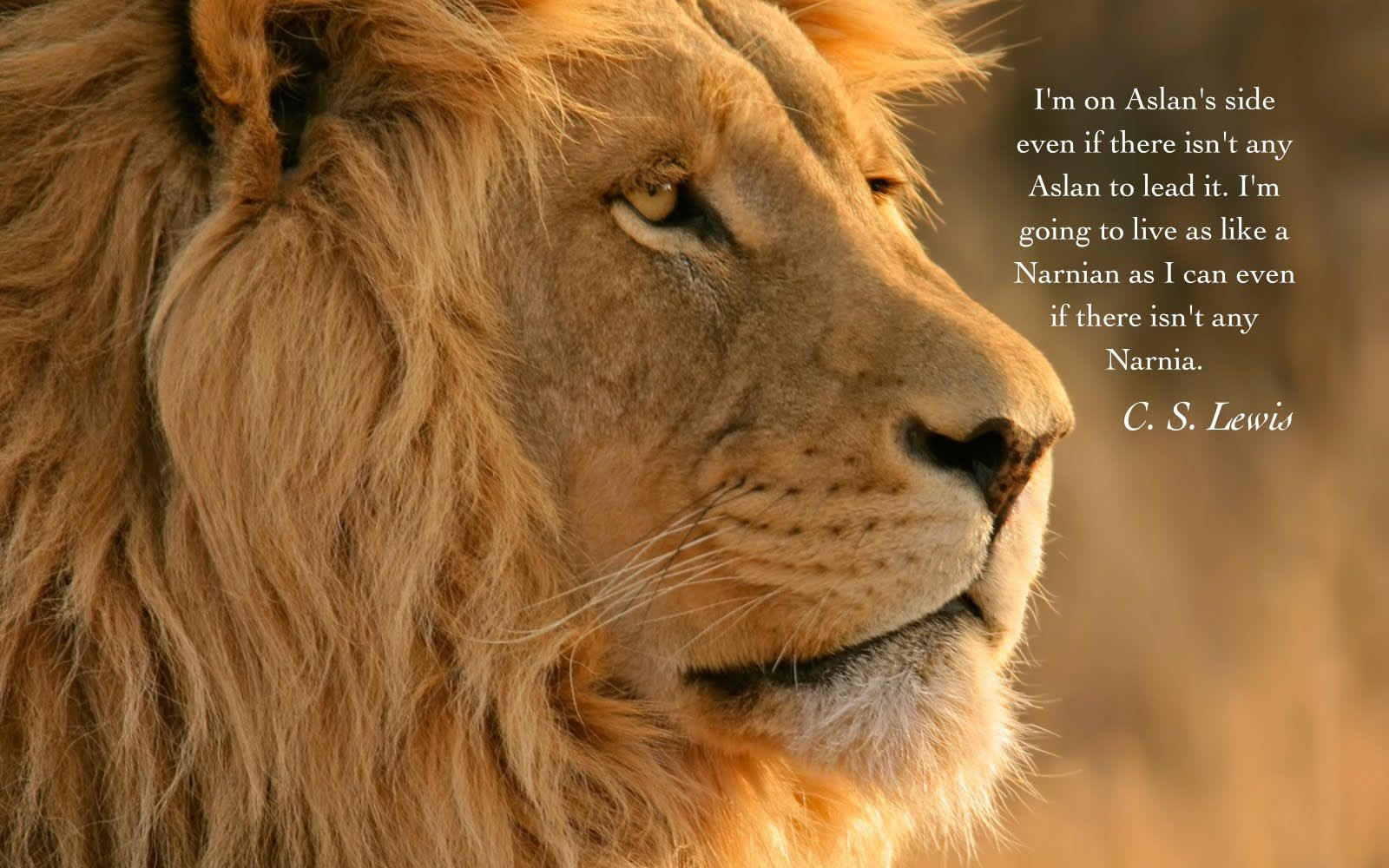 Quotes About The Lion Aslan. QuotesGram | Narnia | Pinterest ... for Narnia Aslan Quotes  54lyp