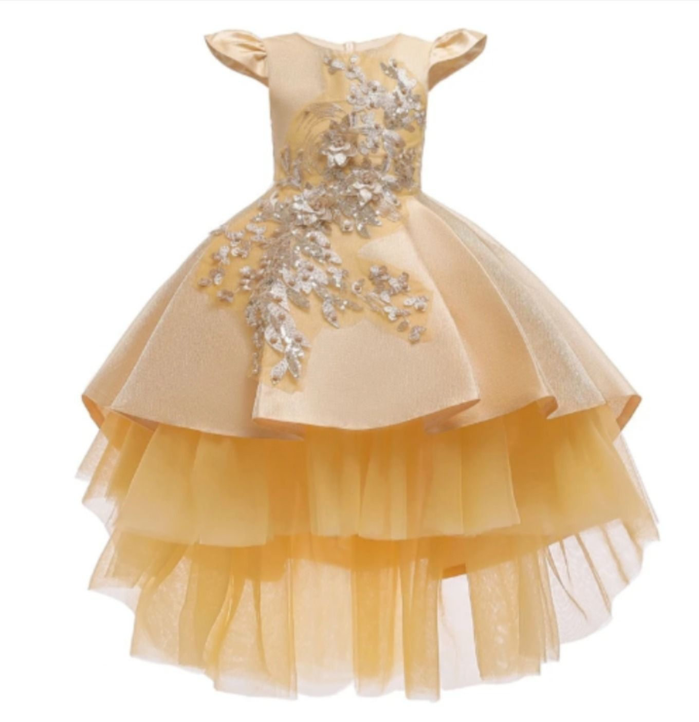 Girl/'s Fluffy Dress Princess Sleeveless Dress Lace Embroidered Party Dress Gifts