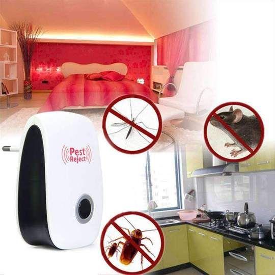 Was sind die schädlichen Auswirkungen von Schädlingen? #pestreject #pestrepeler #pestcontrol #ultras...