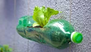 Resultado de imagen para jardin vertical en apartamento