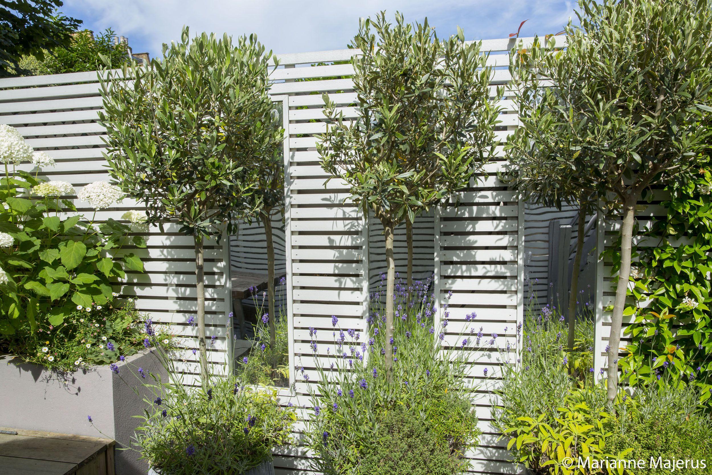 fulham slim subtle garden design london