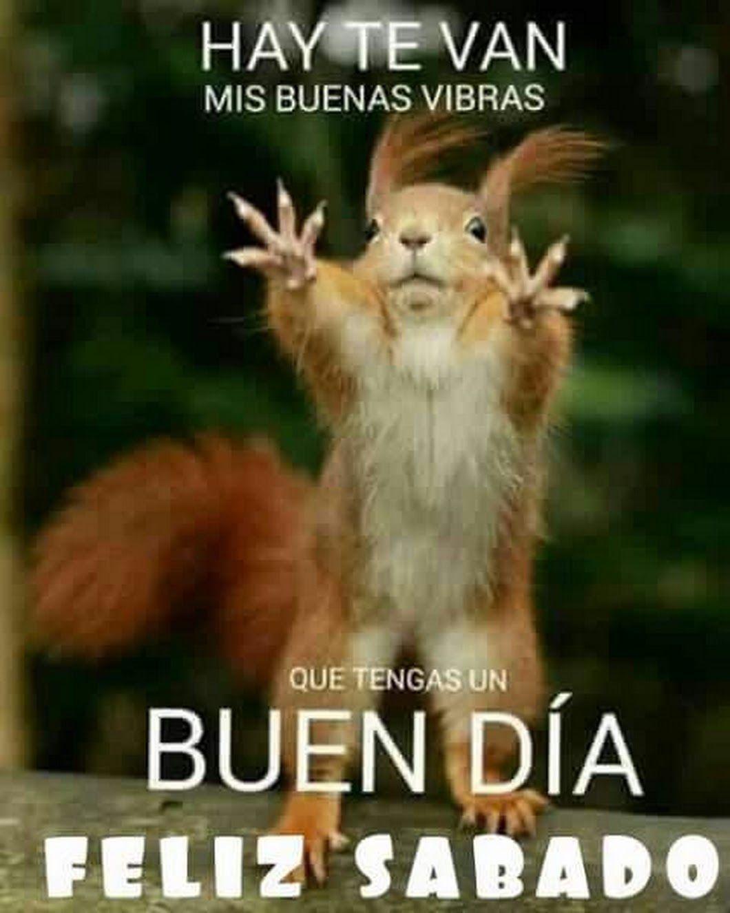 Sign In Memes Spanish Humor Good Morning Good Night