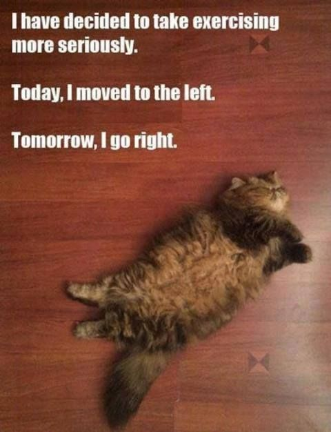 fibromyalgia meme: i've decided to take exercising more seriously. today i moved to the left. tomorrow, i go right.