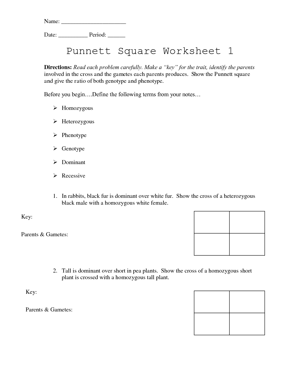 Punnett Square Worksheet 1 Answer Key In