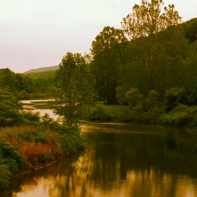 Places To Camp Pa: Beautiful Tionesta, Pa- Great For Camping/hiking/fishing