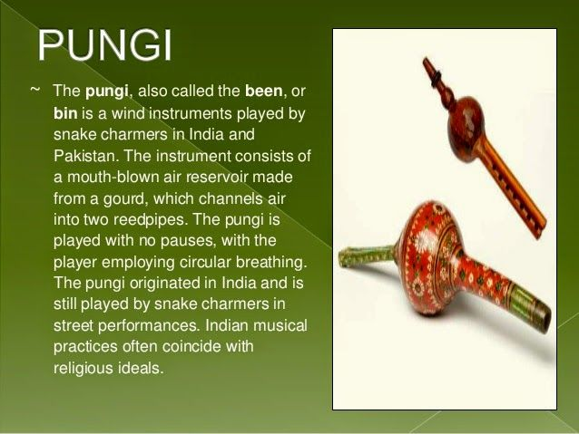Pungi   instrument used by snake charmers   part of Janet's