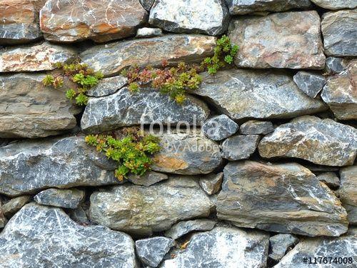 Gartenmauer Aus Naturstein Mit Moos Und Flechten In Wettenberg Krofdorf Gleiberg In Mittelhessen Steinmauer Garten Garten Natursteine