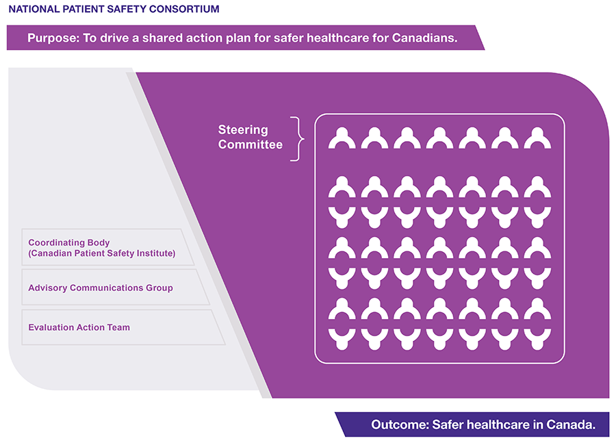 National Patient Safety Consortium in 2020 Patient