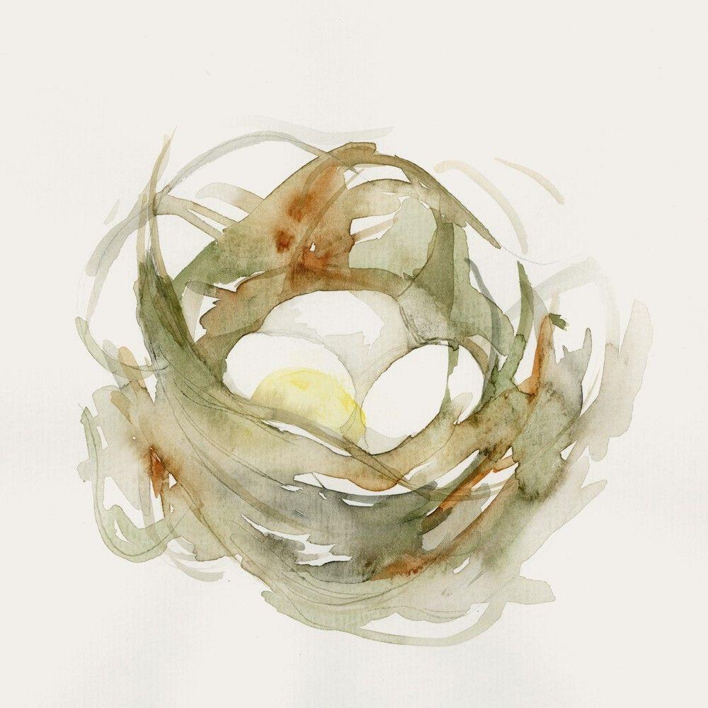 Birds Nest Fine Art Print From Original Watercolor 38 00 Via