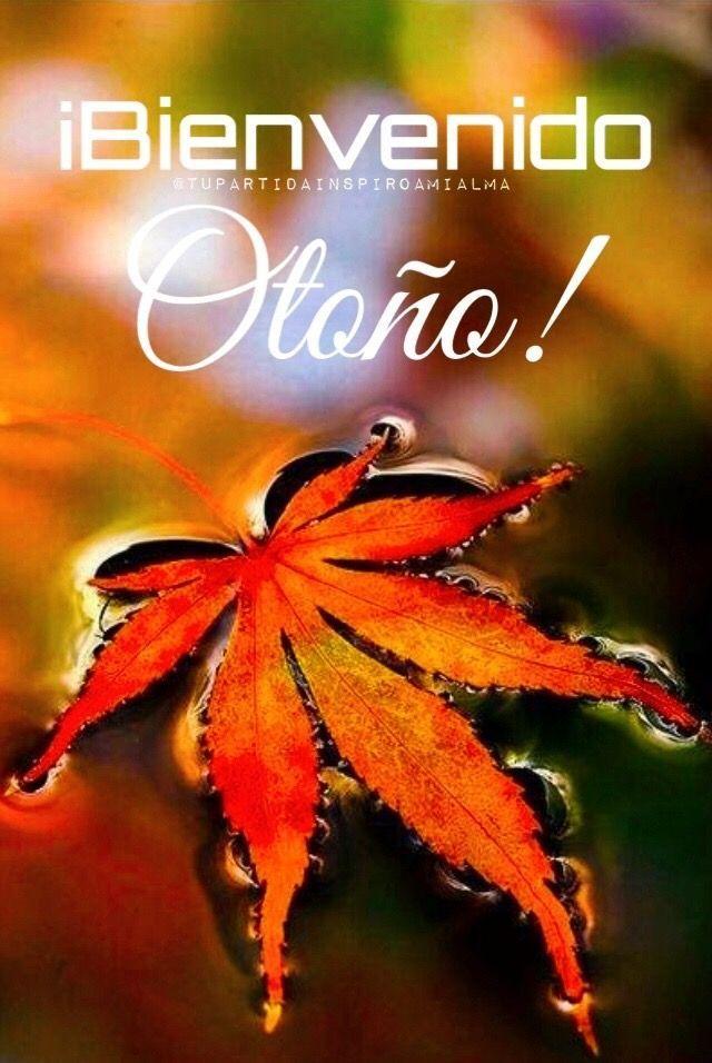 ¡Bienvenido OTOÑO!???????? #bienvenidootoño ¡Bienvenido OTOÑO!???????? #bienvenidootoño