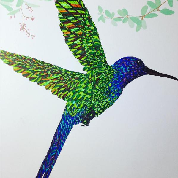 Swallowtail Hummingbird From The Aviary Coloring Book Coloring Books Coloring Book Art Art Pens