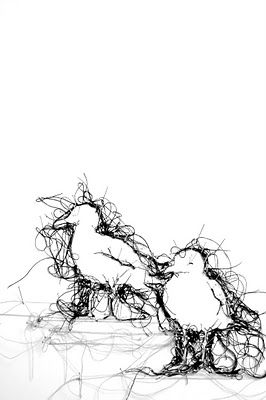Thread Drawings By Debbie Smith Needle Thread Pinterest