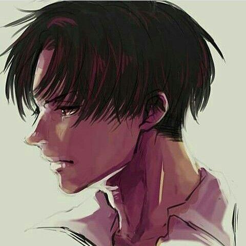 Levi c: | anime ❤ | Levi ackerman, Attack on titan levi, Attack on