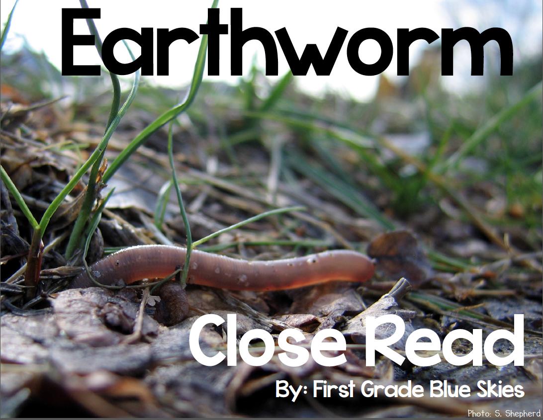 First Grade Blue Skies: Earthworm Close Read   Close ...