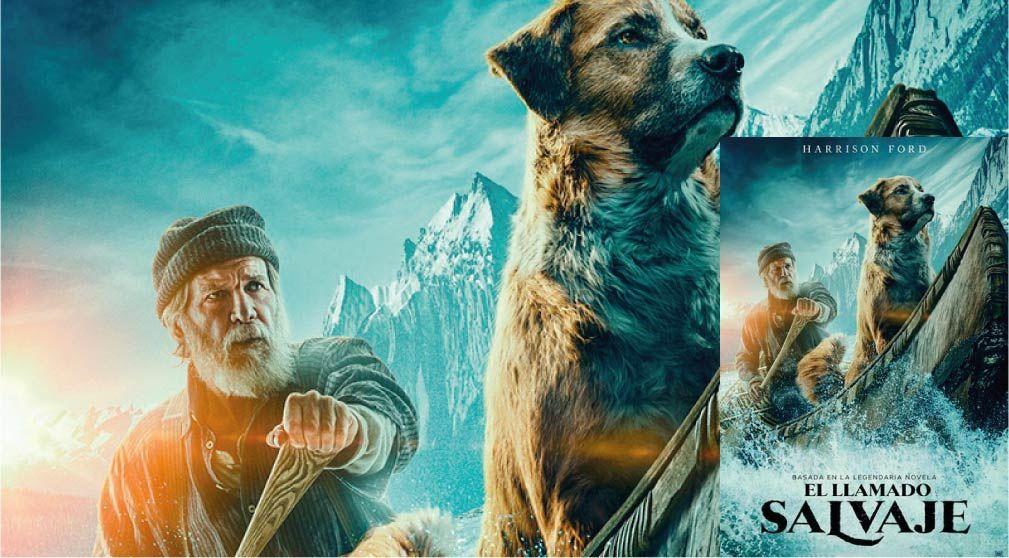 El Llamado Salvaje Pelicula Online Fullhd Movies Zone X Peliculas Online Movie Posters Painting Movies