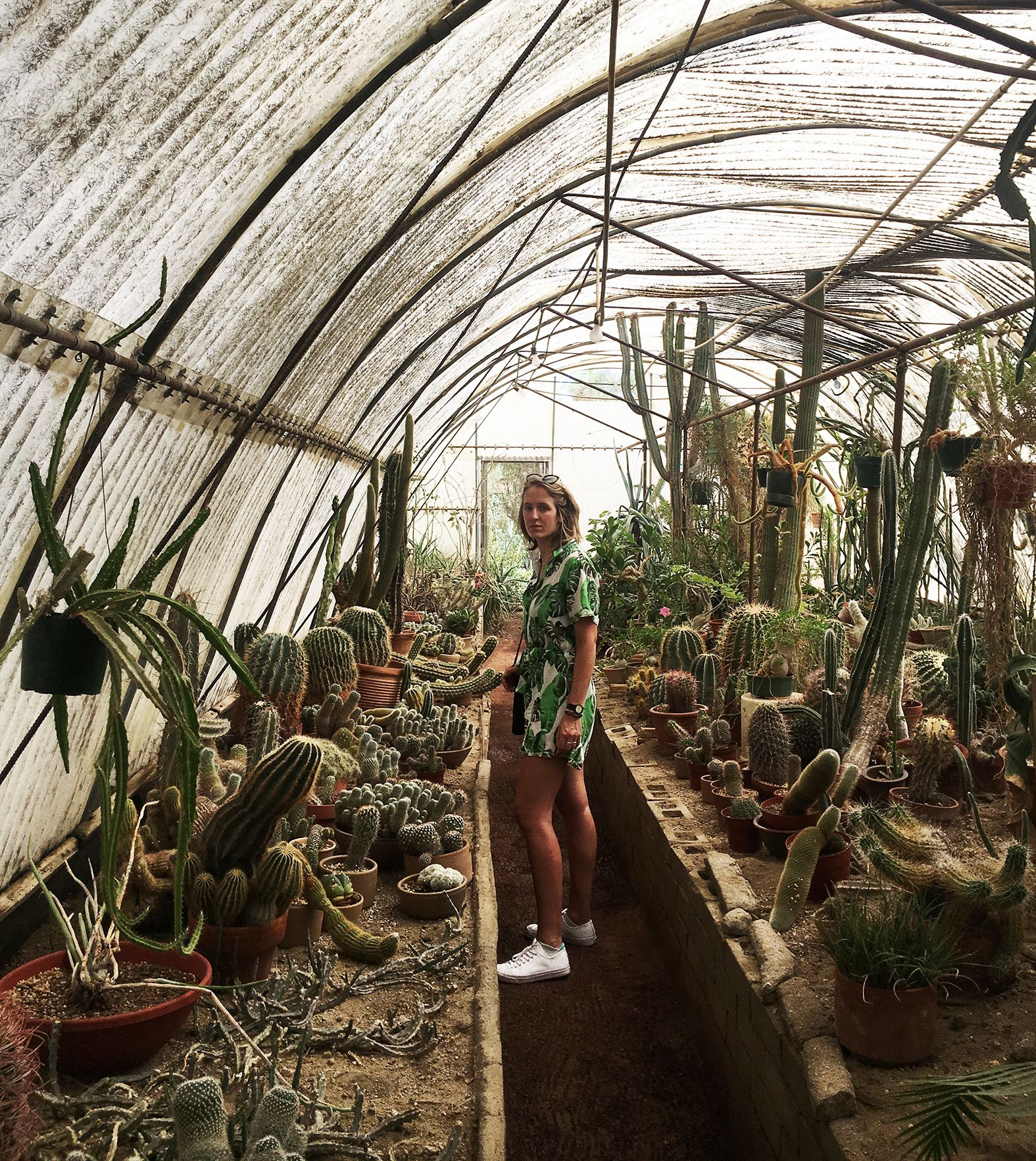 Hilly Founder Hilary At The World S First Cactarium At Moorten