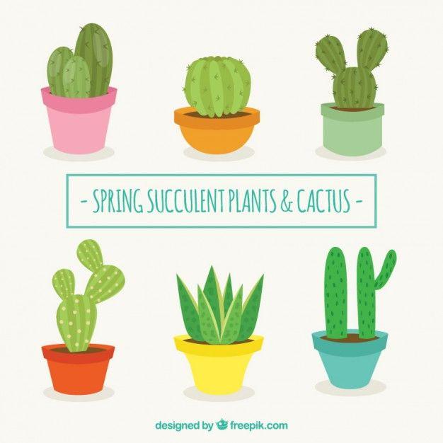Editable en illustrator. Colección de cactus con diseño ...