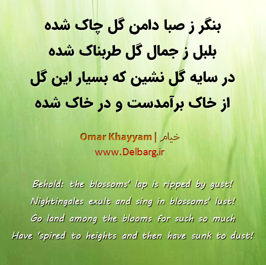 Omar Khayyam رباعی معنوی خیام Typography Mysticpoets Persianpoems Persian Poem Poems Beautiful Horses
