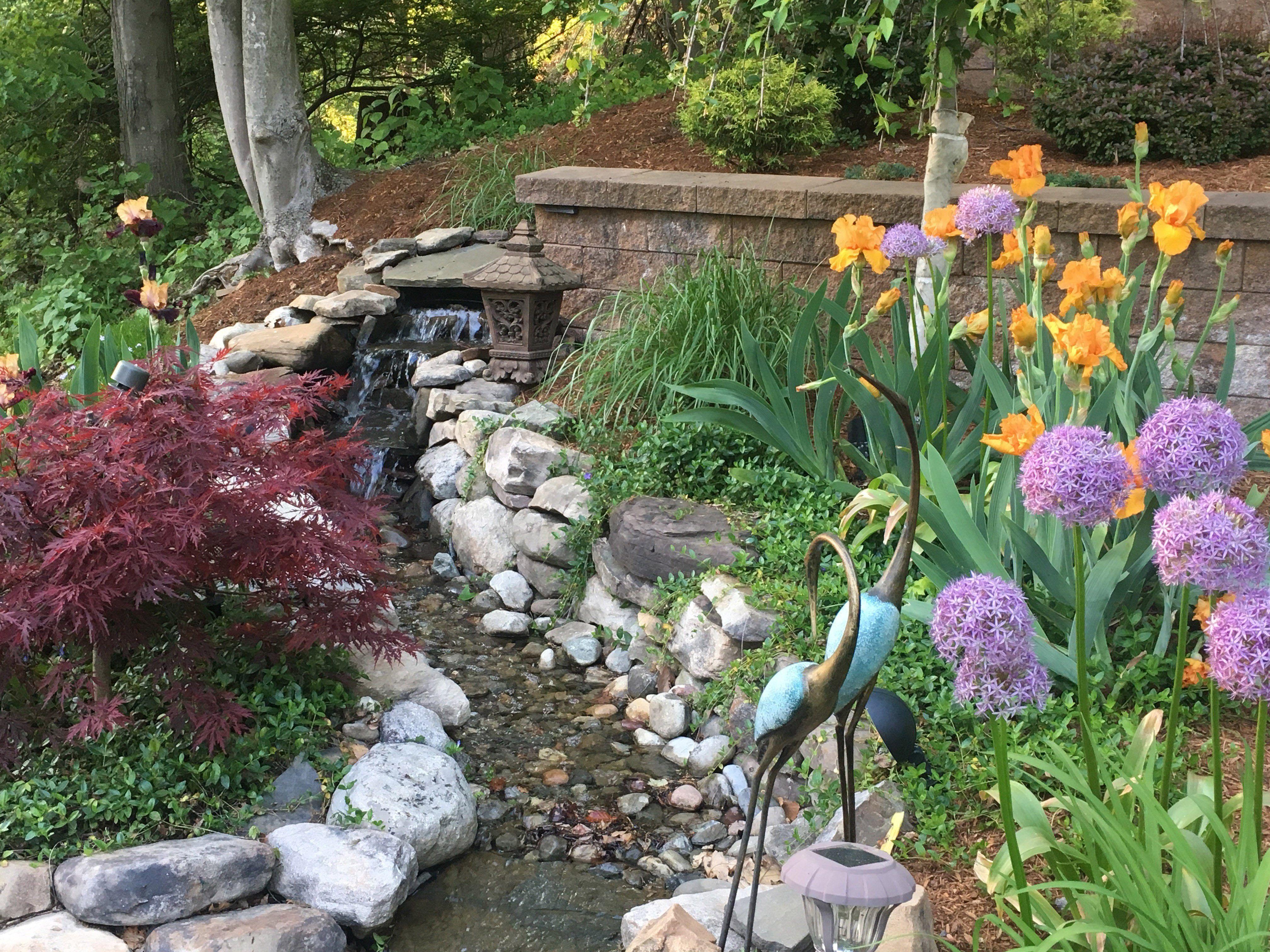 Top 10 Landscape Design Apps | Garden design software