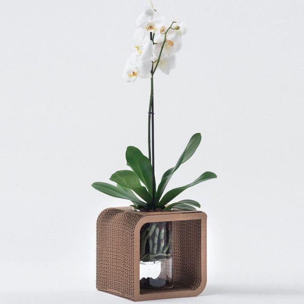 Vaso Portacandele Decorativo In Cartone Tobe 20 Di Lessmore Design Giorgio Caporaso