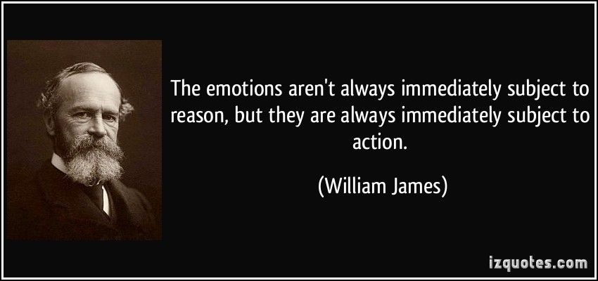 Image result for proverb william james