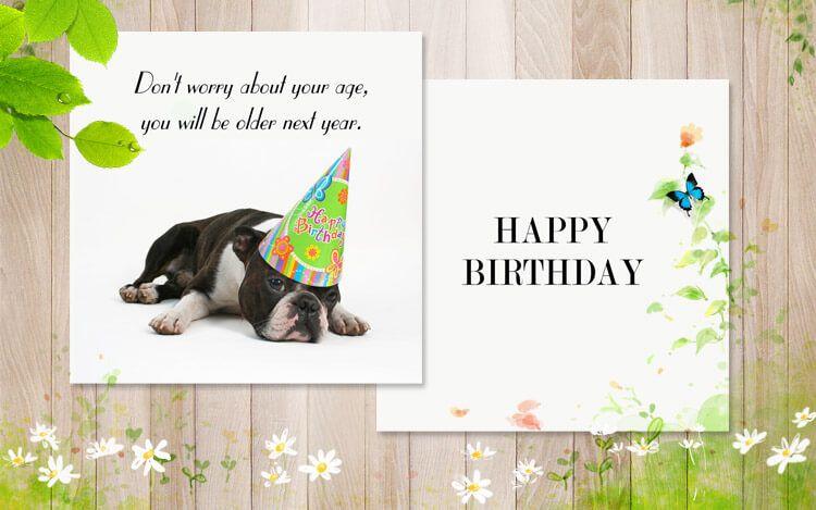 Funny Birthday Card Greeting Cards Pinterest Birthday Card