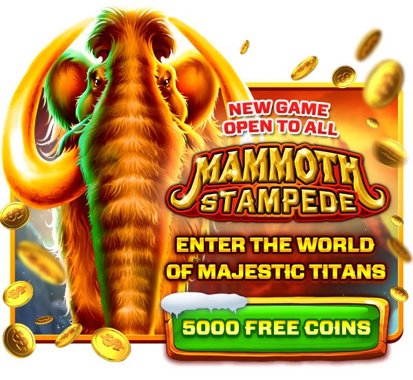 Video Slots Promotions