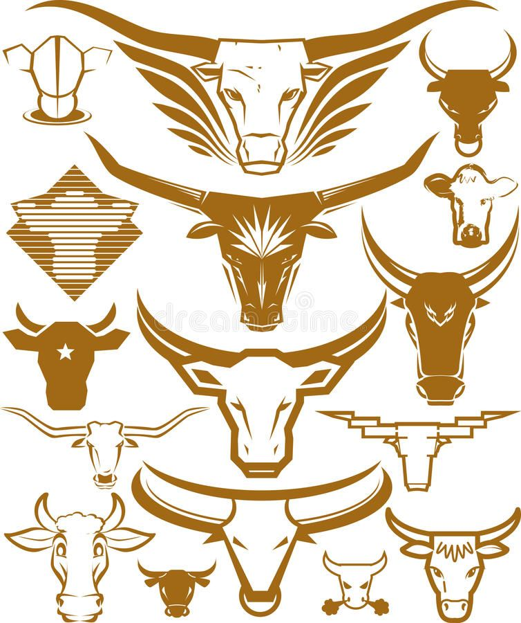 Cow and Bull Head Collection stock illustration Cow logo