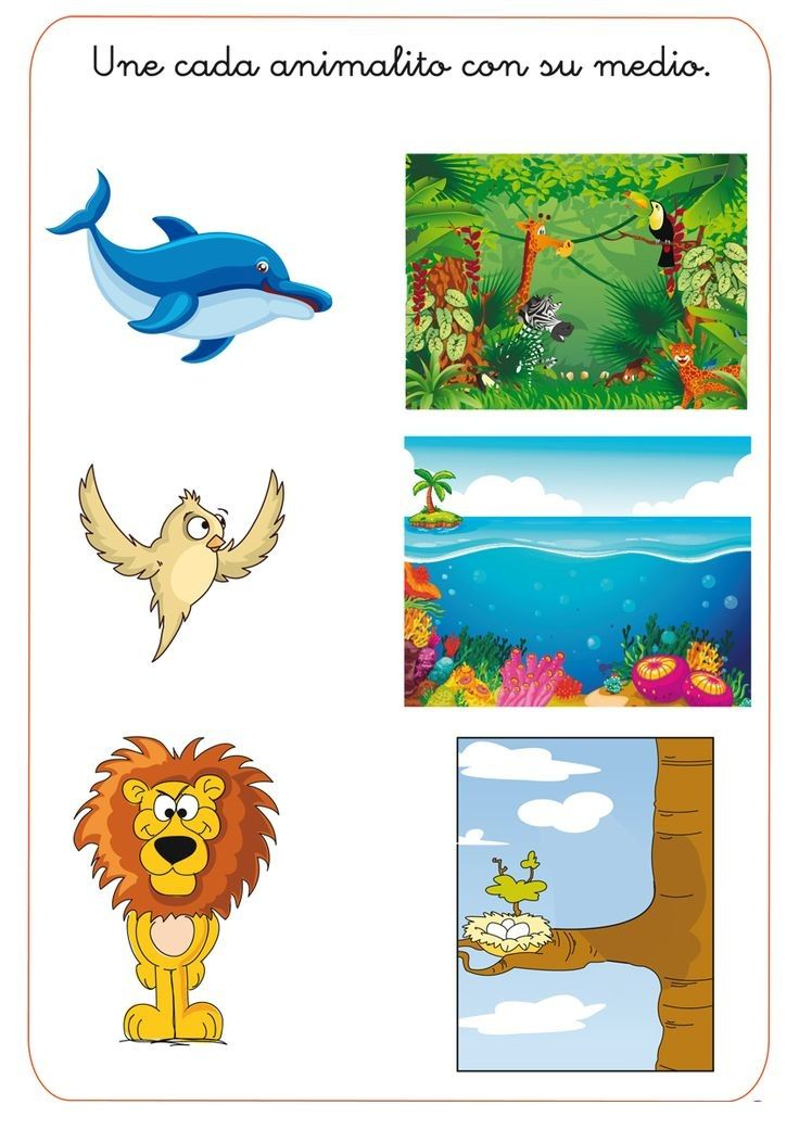 animal habitat worksheet for kids 2 Animal habitat – Animal Habitat Worksheets for Kindergarten